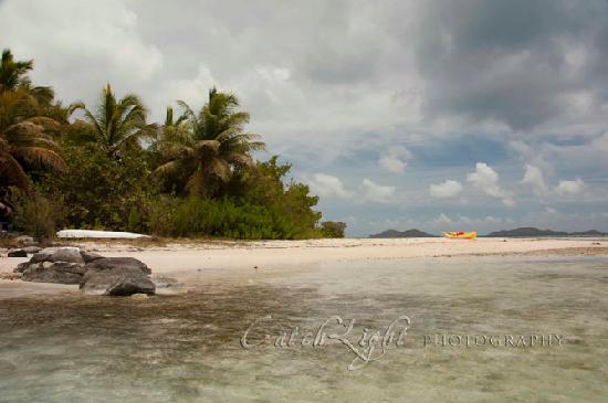 Surfsong Villa Resort: beach