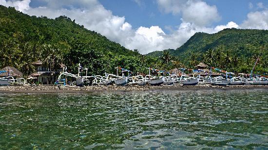 阿姆德棕櫚花園海灘水療度假村照片