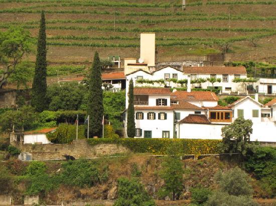 Quinta de la Rosa: Property