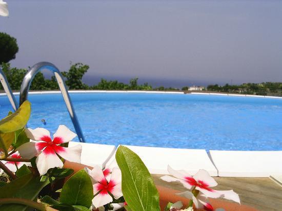 Agriturismo La Pergola: La piscina
