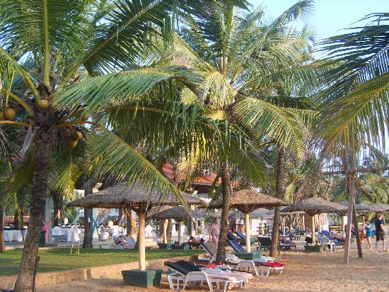 Hotel Goldi Sands: relax on the adjacent beach