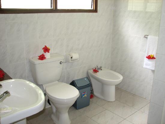 Chez Batista Villas: Das Bad mit Dusche und Föhn