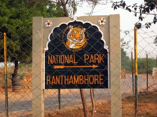 Sign Picture Of Ranthambore National Park Sawai