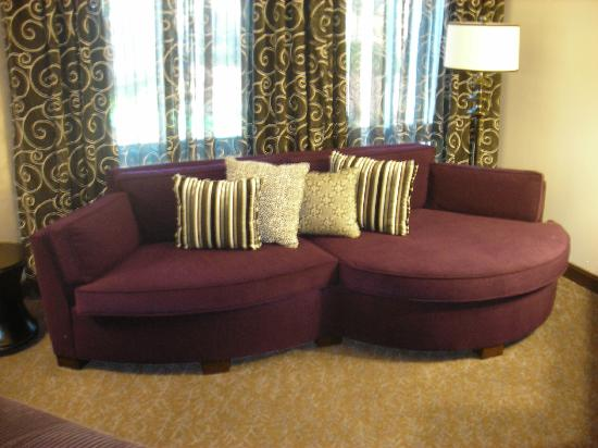 Hyatt Centric The Woodlands: Couch!