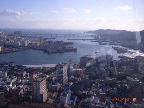Busan, South Korea: 釜山タワーから 釜山大橋