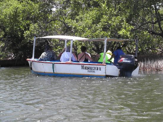 ลากูนาเดอลาเรสติงกา: Unterwegs im Boot mit Guide (Engl., Span.)