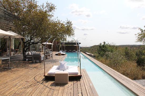 Singita Lebombo Lodge: Pool area
