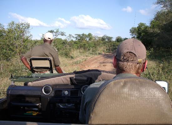 Monwana Game Lodge: On Drive!