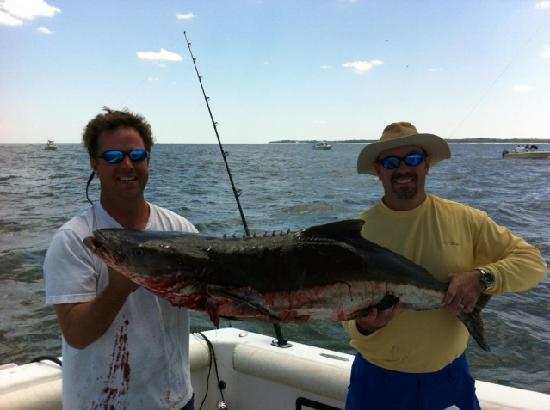 Marsh Tacky Sportfishing: 2011 cobia