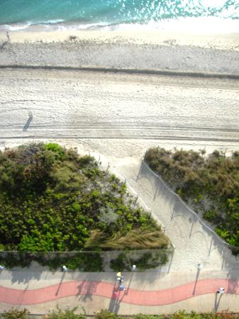 Deauville Beach Resort: Straight down from our room- the walking path