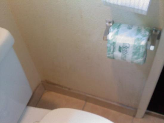 Americas Best Value Inn & Suites: Stains on bathroom wall