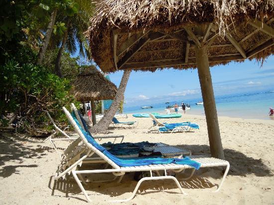 Castaway Island Fiji: Heaven!