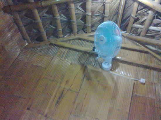 Napintas Vista: Fan in the kubo room