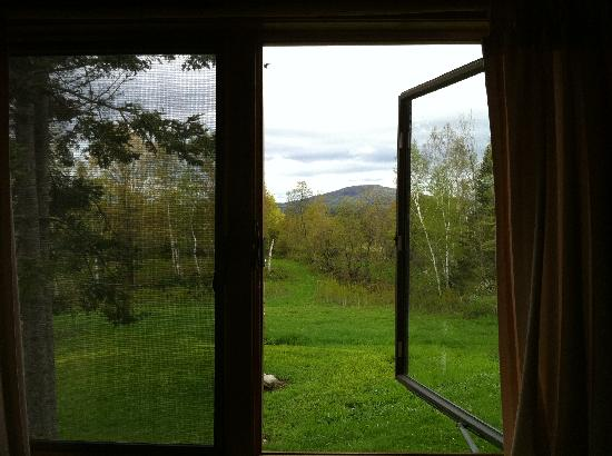 Josselyn's Getaway Log Cabins: through window