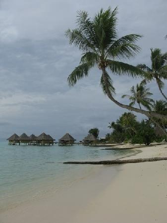 InterContinental Bora Bora Le Moana Resort : View of our block of OWB from the beach