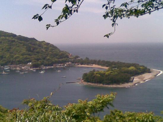 Toi Fujiya Hotel: 海岸線の山側からの戸田港