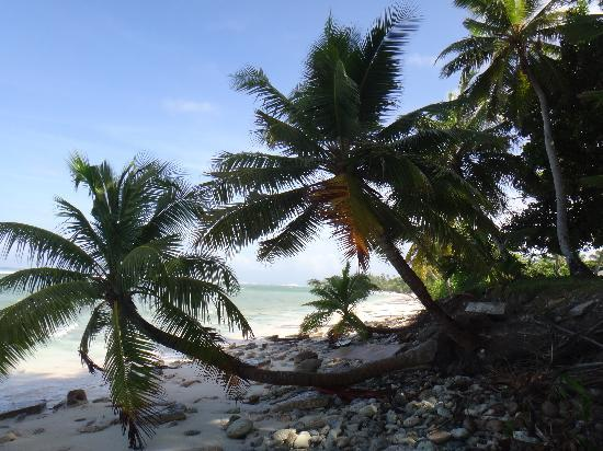 Cocos Castaway: The beach in front of the accommodation