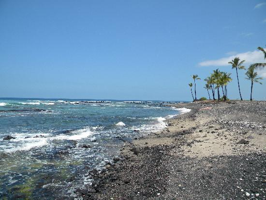 Keauhou Kona Surf & Racquet Club: Our beautiful beach!