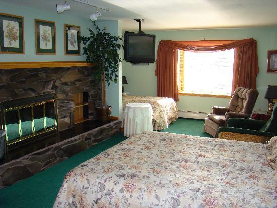 Alaska House of Jade Bed and Breakfast : Downstairs suite with fireplace