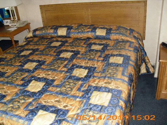 Saga Motor Hotel : King Bed