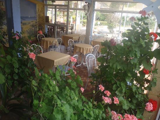 Hotel Les Dunes : salle petit déjeuner et jardin interieur