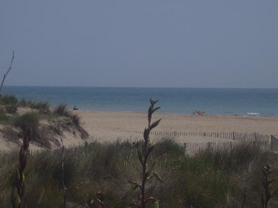 Hotel Les Dunes : plage de sable fin de languedoc