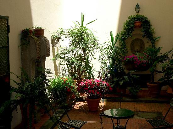 Residenza d'Epoca Via Santo Spirito 6: Courtyard