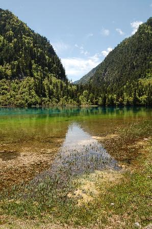 Jiuzhaigou Natural Reserve: 1