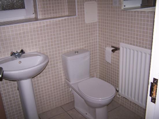Drumorne Guest House: baño