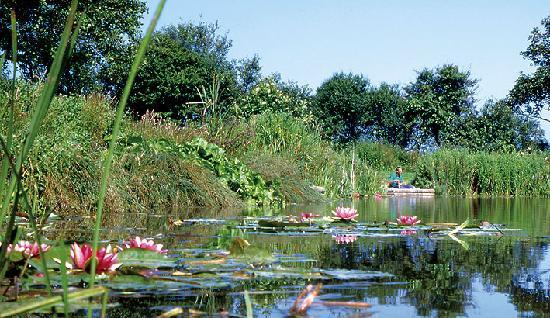 Crantock, UK: Famous for it's fishing lakes