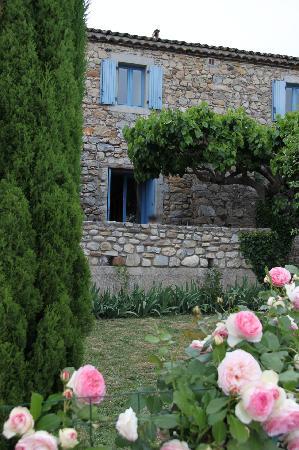 Mas Saint Michel: Garden