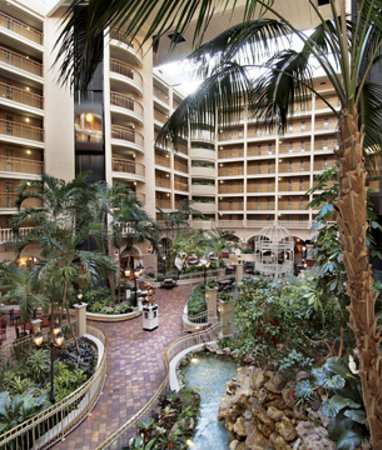Embassy Suites by Hilton Orlando - International Drive / Convention Center: Embassy Suites Orlando Internatonal Drive - Atrium
