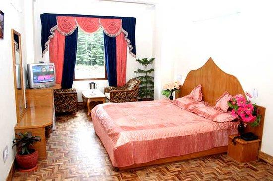 Hotel Nandini Palace : Nandini Palace