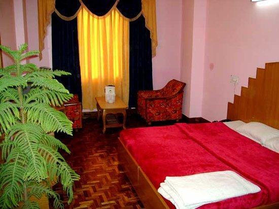 Hotel Nandini Palace: Nandini Palace