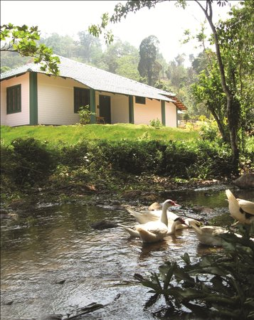 Lakkidi, Indien: Orchard Holiday Resort