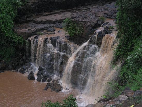 Waterfall Jungle Resort