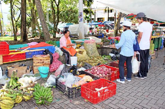 Medellin, Colombia: Farmer's market at the park