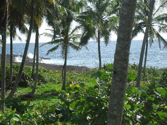Casa Dorado Bed & Breakfast: View along the road toward Las Galeras