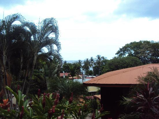Hotel El Jardin: View from the room