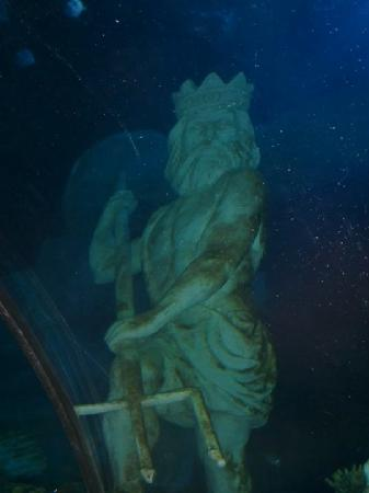 Poseidon Statue Picture Of Sea Life Porto Porto