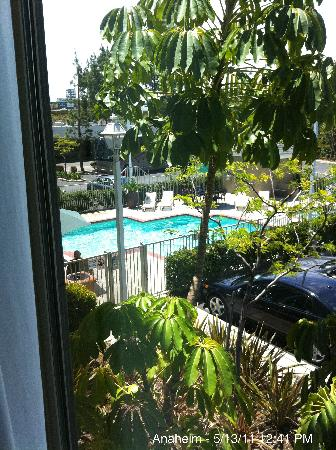Ayres Hotel Anaheim: View of pool from room.