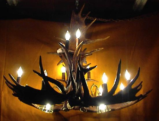 Unique Antler Design Wildlife Gallery: Antler Lighting