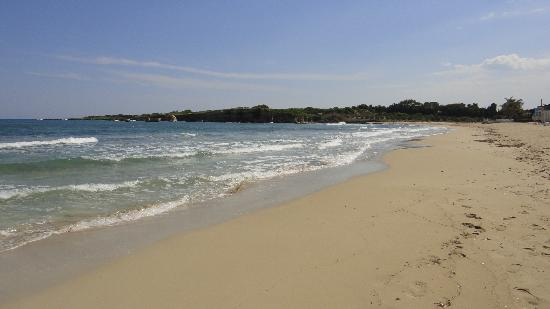 Hotel Villamare: пляж 50 метров от отеля