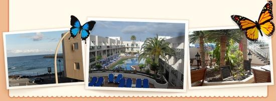 Hotel  Dunas Club : balcony view of harbour, pool & outside terrace
