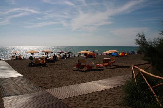 Marina di Bibbona, Italia: spiaggia