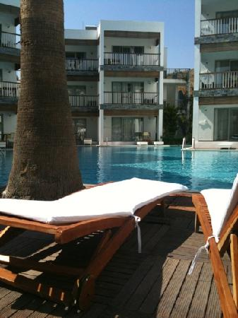 Mio Bianco Resort: pool area