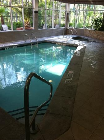 DoubleTree by Hilton Hotel Savannah Airport: the indoor pool and spa tub