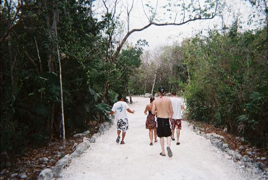 Playa del Carmen, Mexico: Stroll thru the jungle