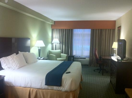 Holiday Inn Express Hotel & Suites Covington: room