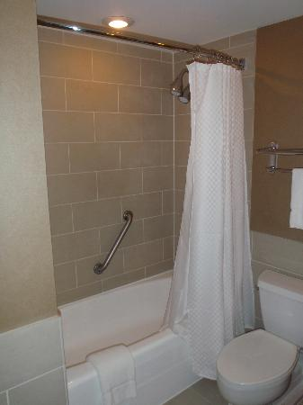 The Westin Tysons Corner: Shower